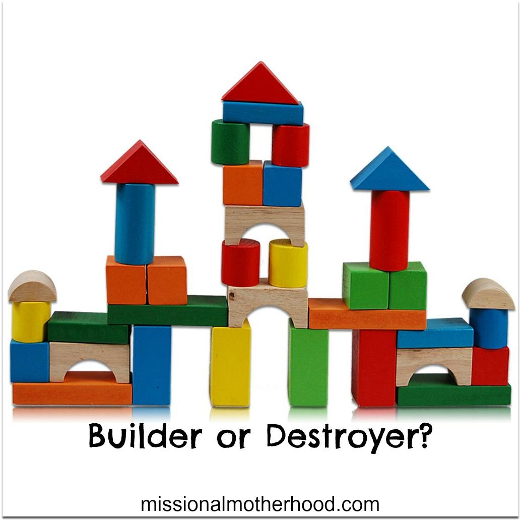 Builder or Destroyer