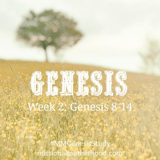 Genesis Study Week 2