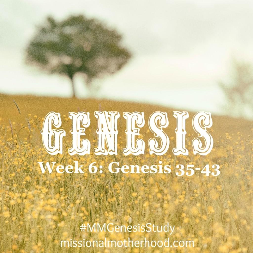 Genesis 35-43