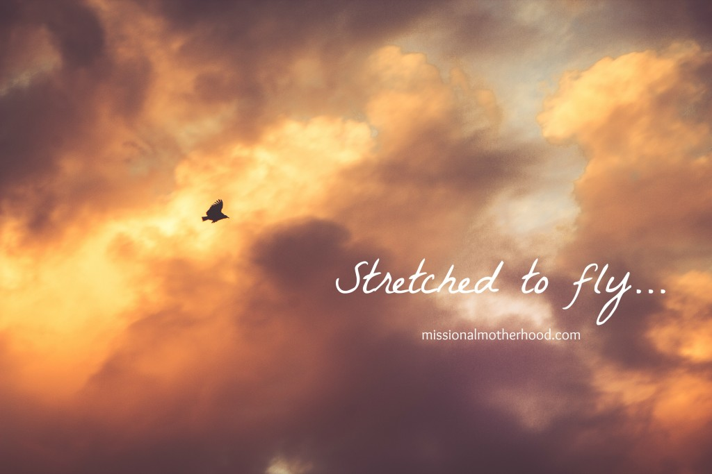 Stretched to fly