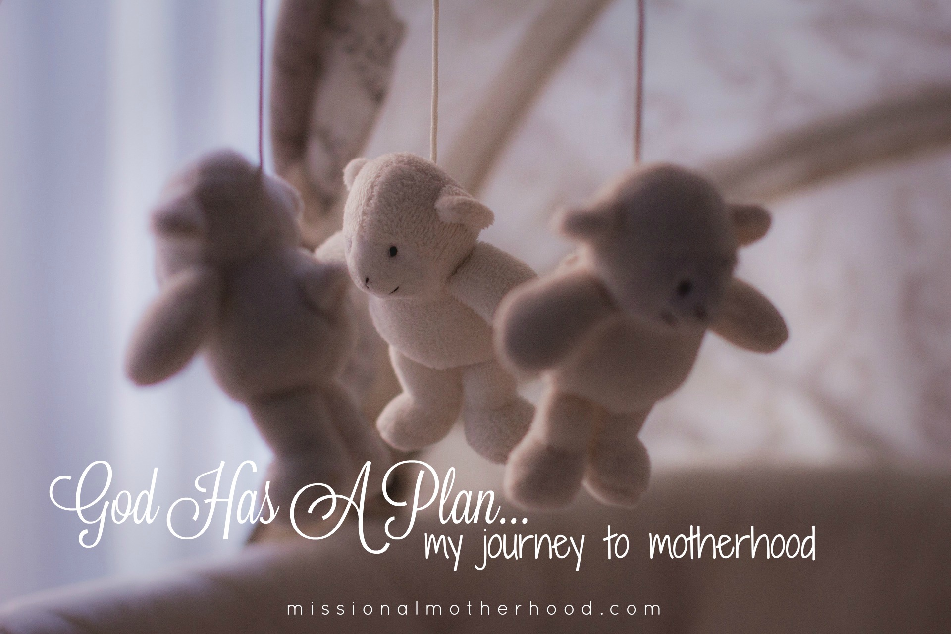 god has a plan my journey to motherhood   missional