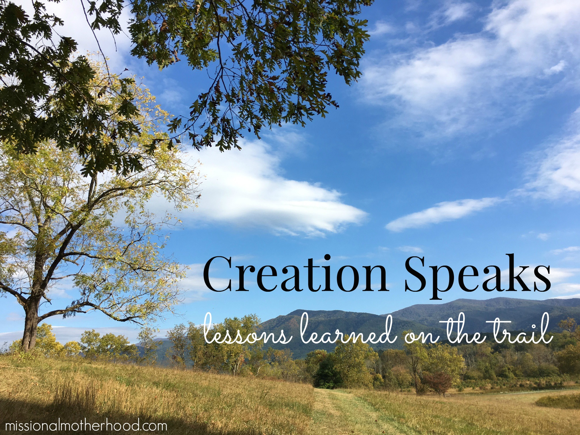 creation-speaks