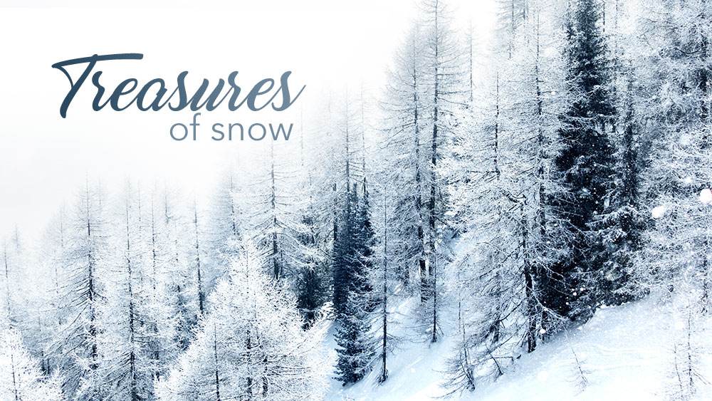 Treasures of Snow