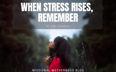 When Stress Rises, Remember
