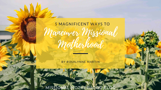 Five Magnificent Ways to Maneuver Missional Motherhood