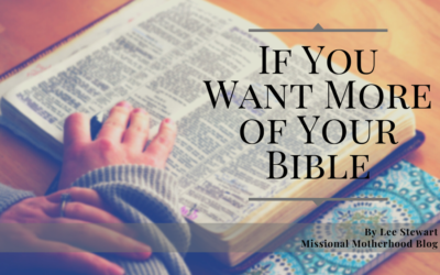 If You Want More of Your Bible